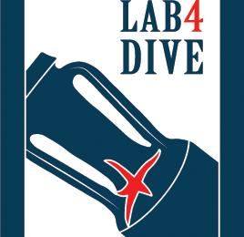 Lab4Dive